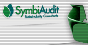 excel vba consulting for SymbiAudit